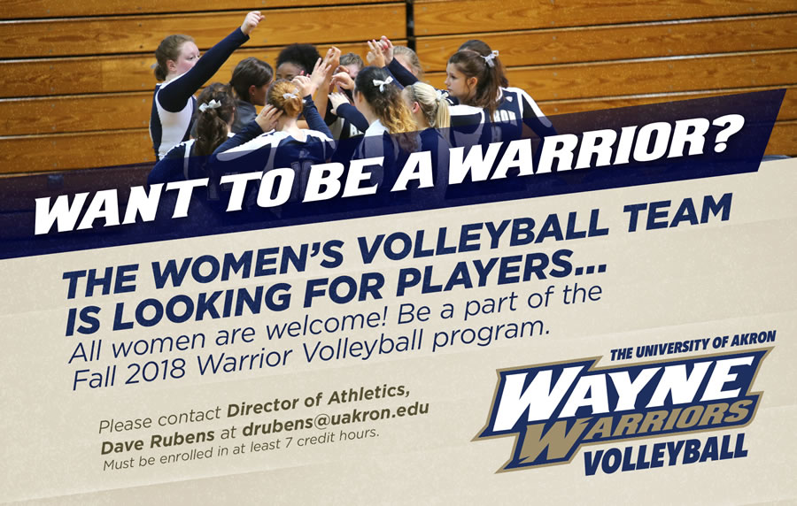 Womens Volleyball Looking for players