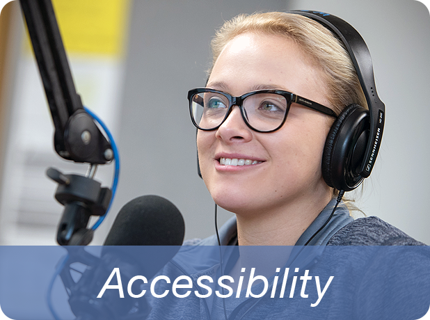 Link to Accessibility information