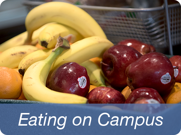 Link to Eating on Campus information